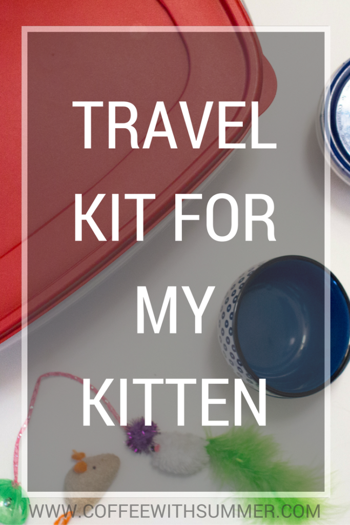 Travel Kit For My Kitten | Coffee With Summer