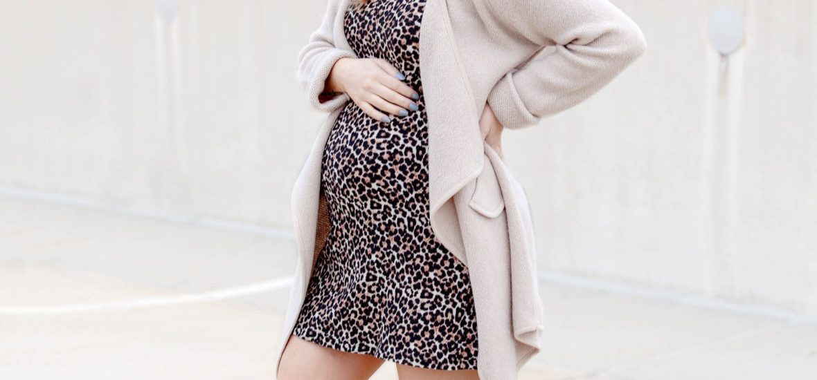 Leopard Print Dress Outfit